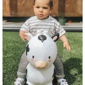 Moooo! 🐮    #trycobaby #bouncy #bouncycow #playtime #cowbabygear #playtime #kidsimagination #playingoutside #playoutside